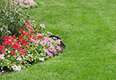 Classic Lawnscape Turf and Landscape Services