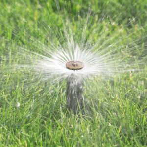 Irrigation System Evaluation St Paul